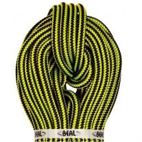 rope BEAL Ginkgo 12mm 60m with sewn termination