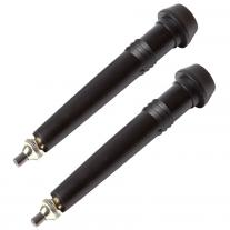 Trekking Poles BLACK DIAMOND Flex Tech Tips