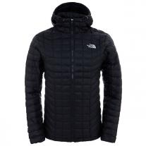 Down, Primaloft Jackets THE NORTH FACE M Thermoball Hoodie black